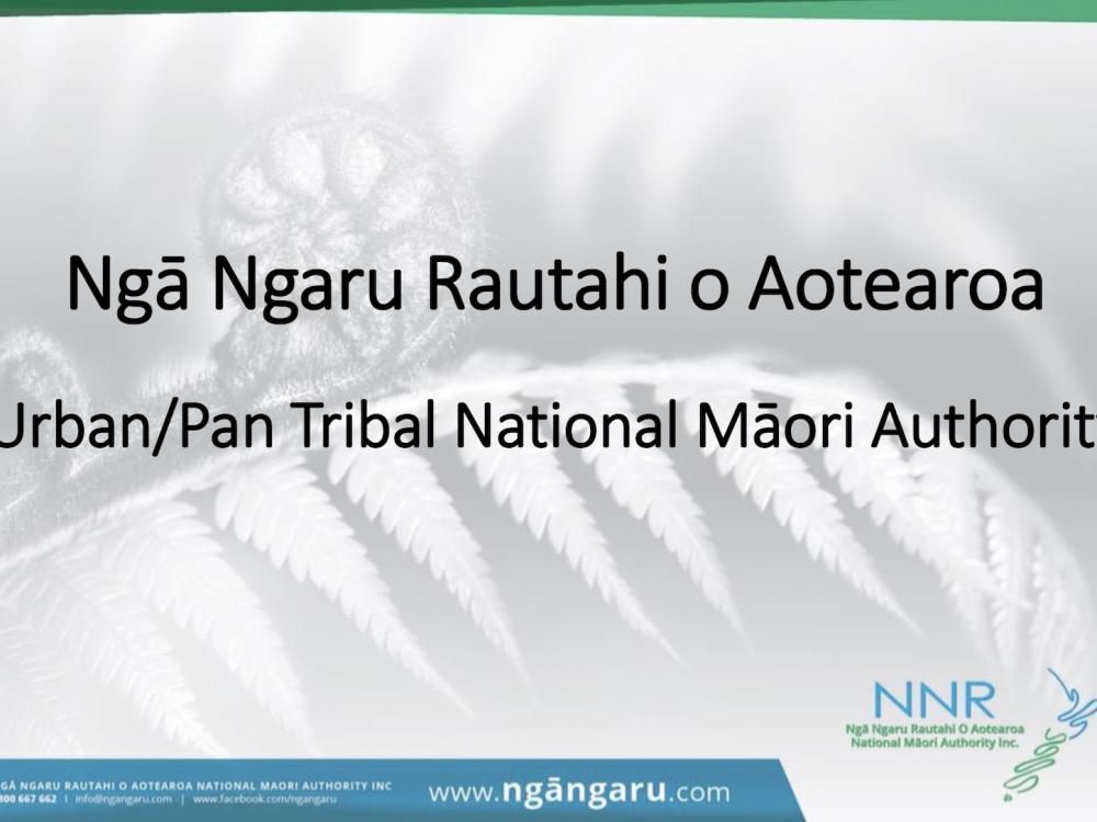 Workshop - Governance Roles and Responsibilities by Diane Tuari (Nga Ngaru Rautahi Aotearoa) Image